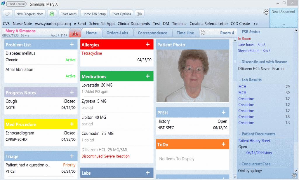MEDENT Patient Chart Summary Screenshot